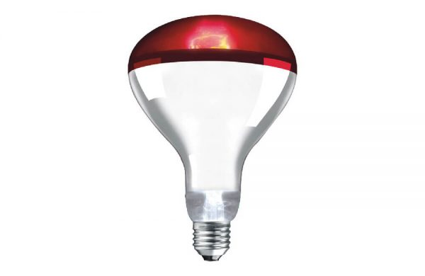250W Infrared Heat Lamp ES Red