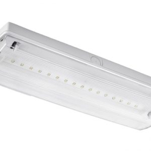 EMERGENCY MAINTAINED/NON-MAINTAINED LED BULKHEAD LIGHT